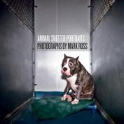 Animal Shelter Portraits