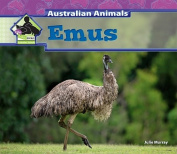 Emus (Big Buddy Books