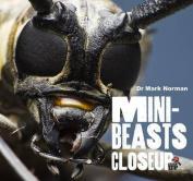 Minibeasts (CloseUp)