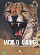 Safari: Wild Cats [Region 2]