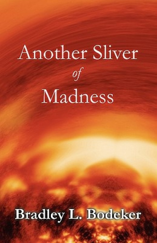 Another Sliver of Madness by Bradley L Bodeker.