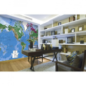 Environmental Graphics C810 World Map Wall Mural - Matte Finish Surface
