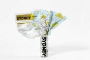 Sydney (Crumpled City Map)