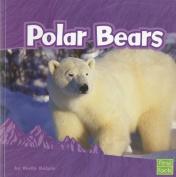 Polar Bears (First Facts