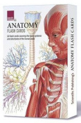 Anatomy Flash Cards