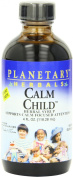 Planetary Herbals Calm Child Herbal Syrup 4 fl oz