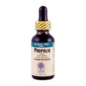 Propolis (Alcohol Free) 30ml