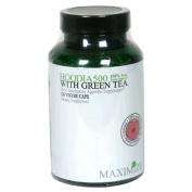 Maximum International Hoodia 500 With Green Tea - 120 Vcaps