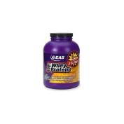 100%Whey Protein Powder, Vanilla, 5 lb