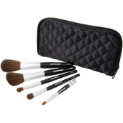 Pur Minerals 5 Piece Makeup Brush Collection