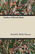 Studies of British Birds