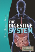The Digestive System (Human Body