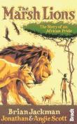 The Marsh Lions