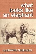 What Looks Like an Elephant