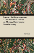 Industry in Glamorganshire - Two Historical Articles on Mining, Fisheries and Manufacturing