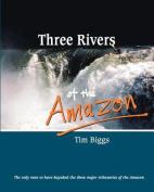 Three Rivers of the Amazon