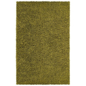 St. Croix Trading Company Chenille Shag 76.2cm x 127cm Area Rug - Moss Green