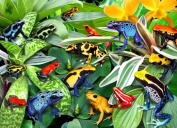 Ravensburger Friendly Frogs - 300 Piece Puzzle