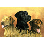 Artists' Collection Large Paint by Numbers Labradors in the Marsh