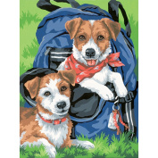 """Learn To Paint! Paint By Number Kit 23cm X12""""-Back Pack Buddies"""