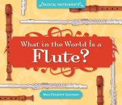 What in the World Is a Flute? (Super Sandcastle