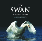 The Swan: A Natural History