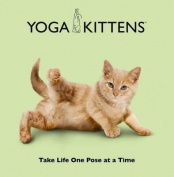 Yoga Kittens
