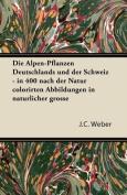 Die Alpen-Pflanzen Deutschlands Und Der Schweiz - In 400 Nach Der Natur Colorirten Abbildungen in Naturlicher Grosse [GER]