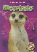 Meerkats (Blastoff! Readers