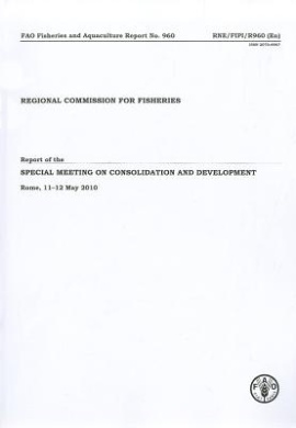 Report of the Recofi Special Meeting on Consolidation and Development Download Epub ebooks