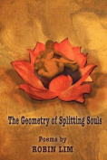 The Geometry of Splitting Souls