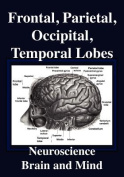 Frontal Lobes, Parietal Lobes, Occipital Lobes, Temporal Lobes, Neuroscience, Brain and Mind