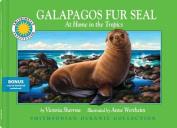 Galapagos Fur Seal (Smithsonian Oceanic Collection