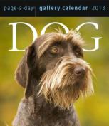 Dog Gallery 2013