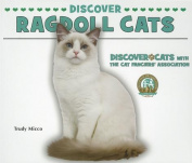 Discover Ragdoll Cats