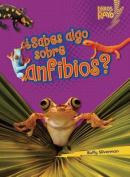 Sabes Algo Sobre Anfibios  [Spanish]