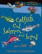 Catfish, Cod, Salmon, and Scrod