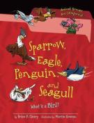 Sparrow, Eagle, Penguin, and Seagull