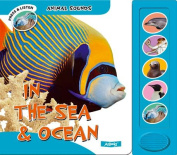 In the Sea and Ocean (Animal Sounds) [Board book]