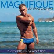 Magnifique Wall Calendar: 2013
