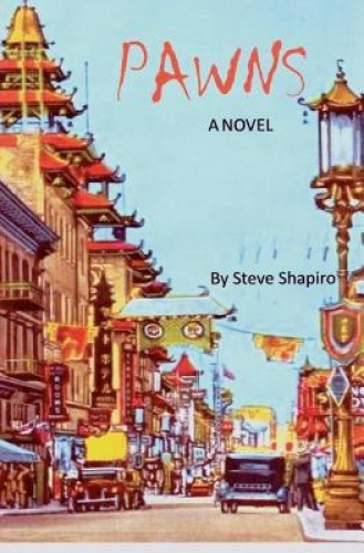 Pawns: The Paperback Novel by MR Steve Shapiro