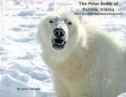 The Polar Bears of Barrow, Alaska