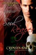 Soul Reaper Series Book II