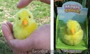 Magic Chirping Chicken