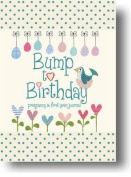Bump to Birthday, Pregnancy & First Year Journal