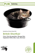 British Shorthair [FRE]