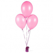 Pink Latex Balloons (2 dz)