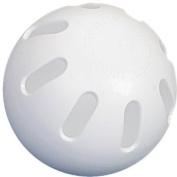 Wiffle Ball Baseball