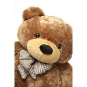 Sunny Cuddles - 120cm  - Super Cute & Huggable, Giant Teddy Mocha Coloured Plush Bear