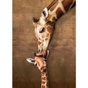 Jigsaw Puzzle 1000 Pieces 49cm x 70cm -Giraffe Mother's Kiss